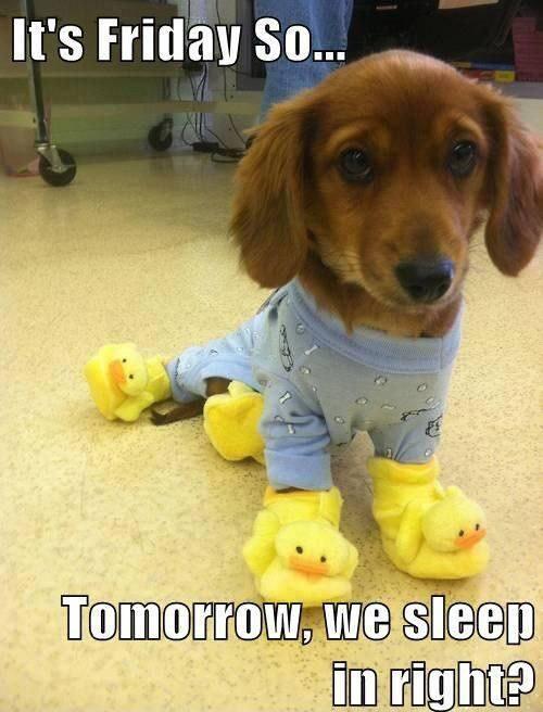 its-friday-so-tomorrow-we-sleep-in